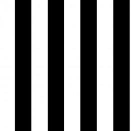 Полимерная покраска в белый и черный цвета